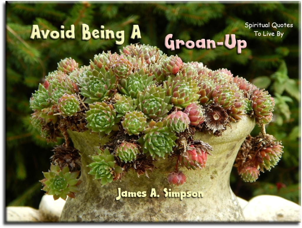 James A. Simpson quote: Avoid being a groan-up. - Spiritual Quotes To Live By