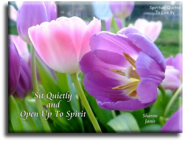Sharon Janis quote: Sit quietly and open up to Spirit. - Spiritual Quotes To Live By