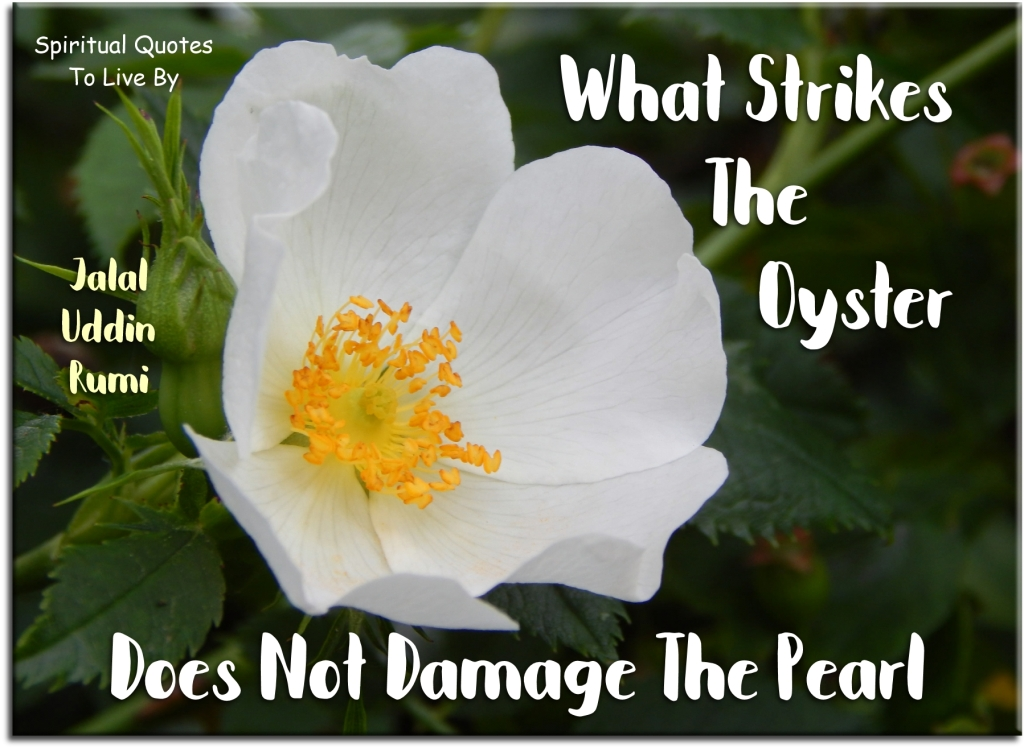 Rumi quote: What strikes the oyster does not damage the pearl. - Spiritual Quotes To Live By