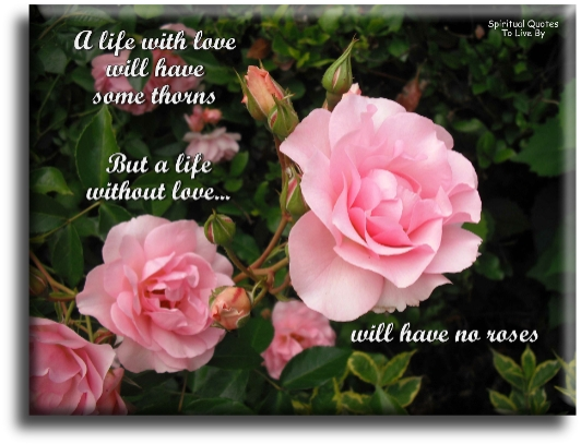 A life with love will have some thorns, but a life without love will have no roses. (unknown) - Spiritual Quotes To Live By