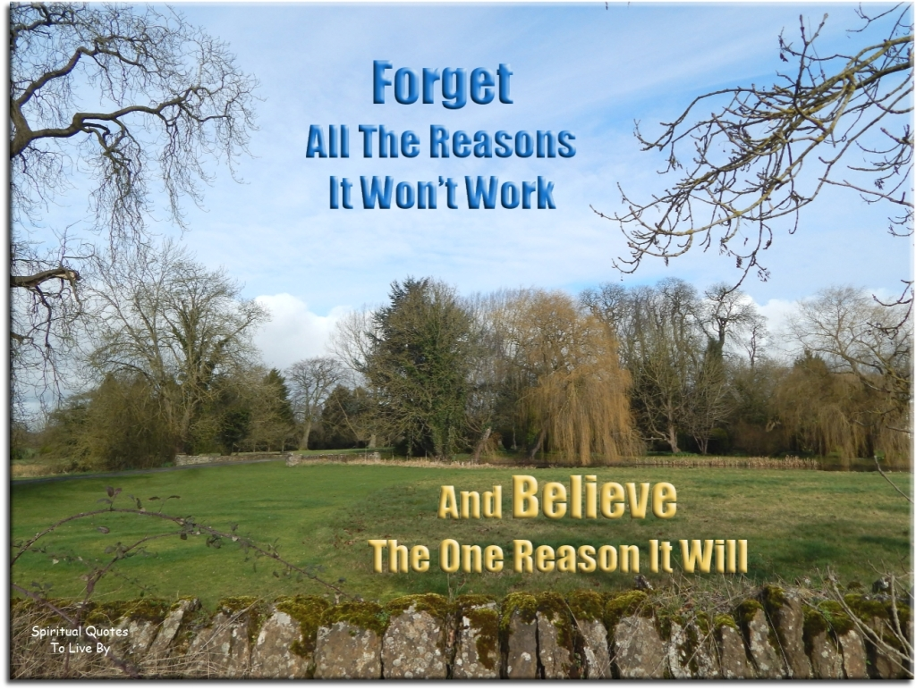 Forget all the reasons it won't work and believe the one reason it will. (unknown) - Spiritual Quotes To Live By