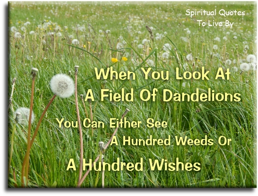 When you look at a field of dandelions you can either see a hundred weeds or a hundred wishes (unknown) - Spiritual Quotes To Live By